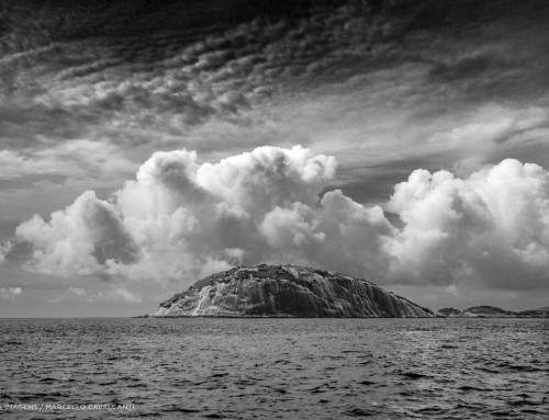 Ilha Cagarra!